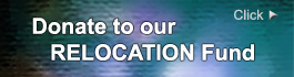 Donate to Dallas Meditation Center relocation fund